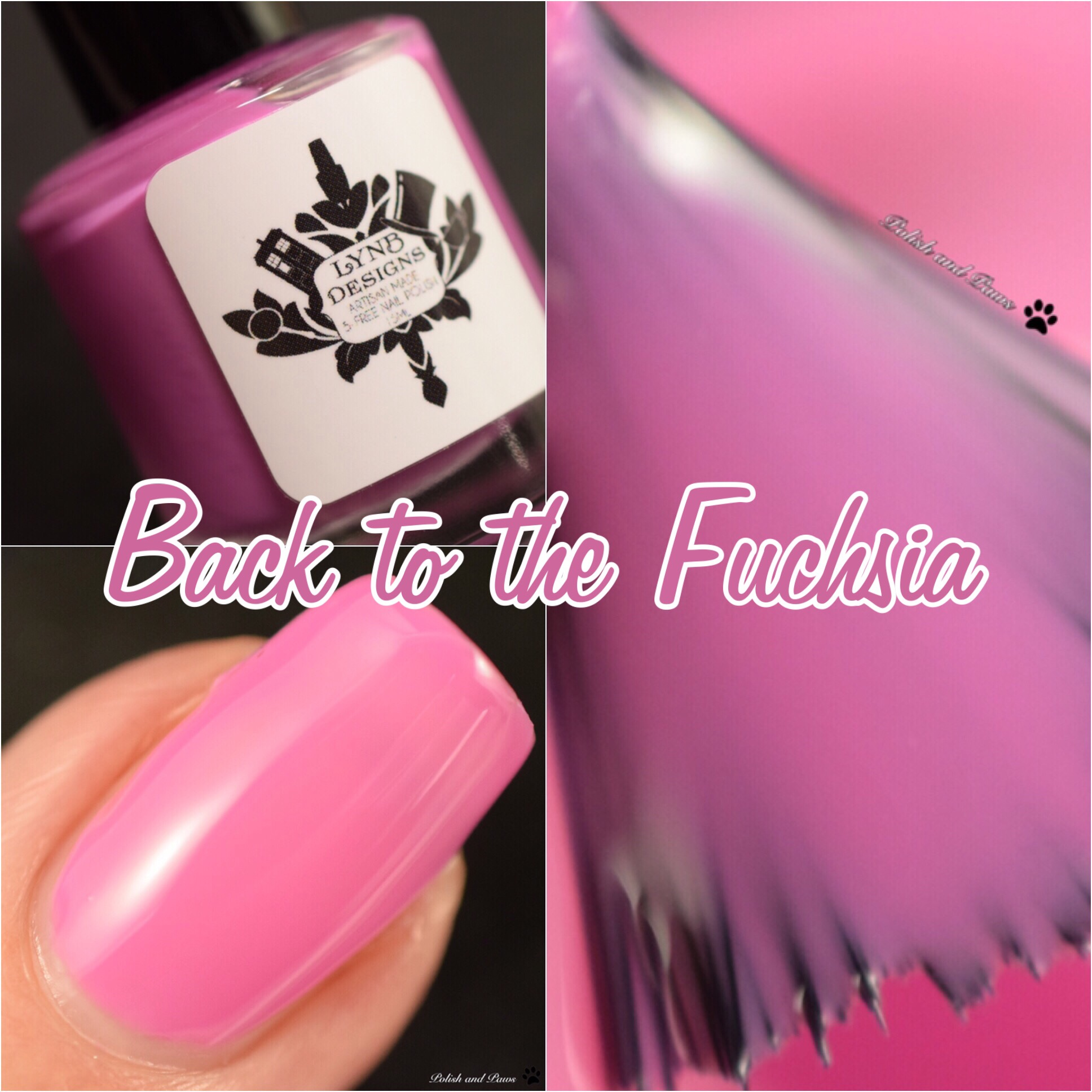 LynB Designs Back to the Fuchsia