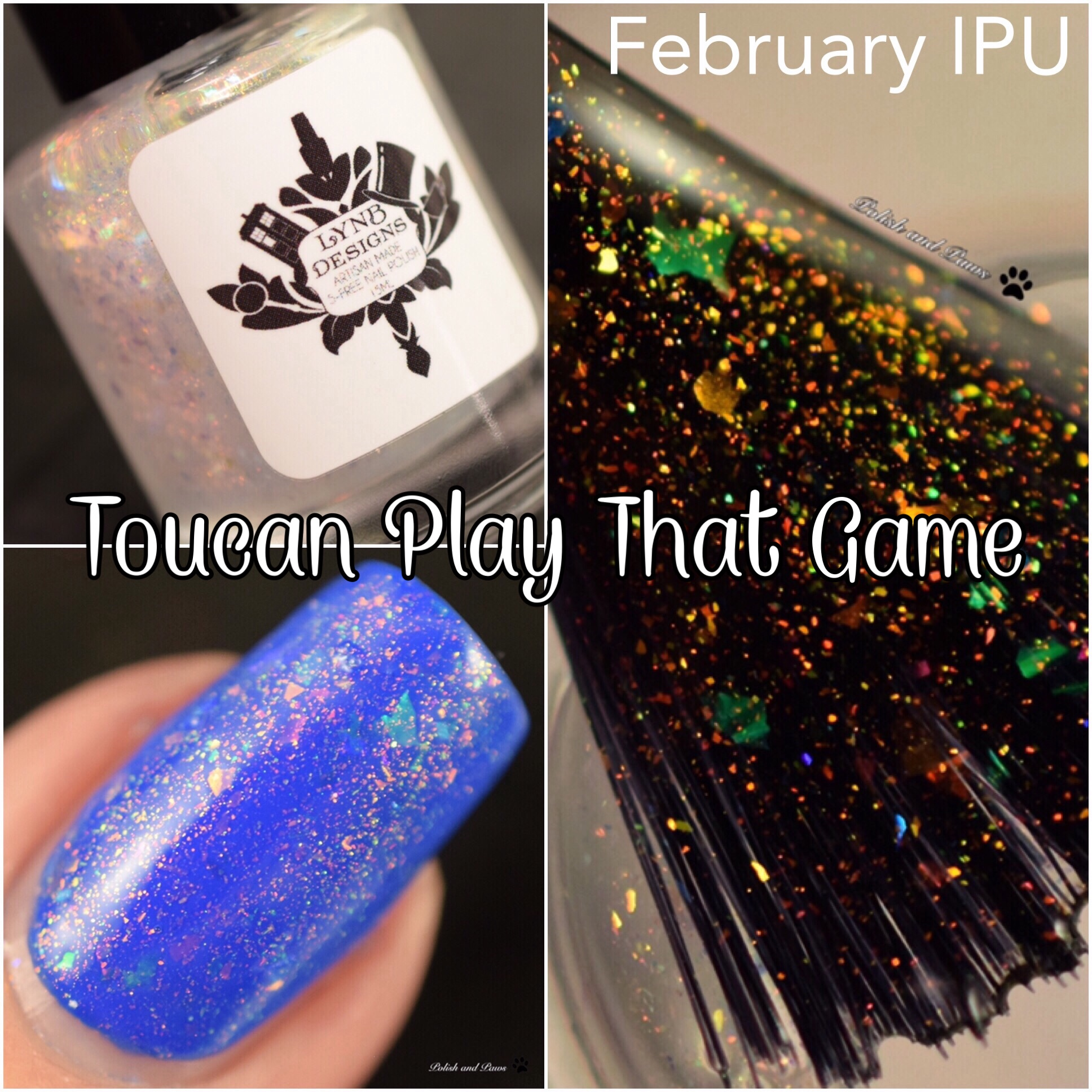 LynB Designs Toucan Play that Game