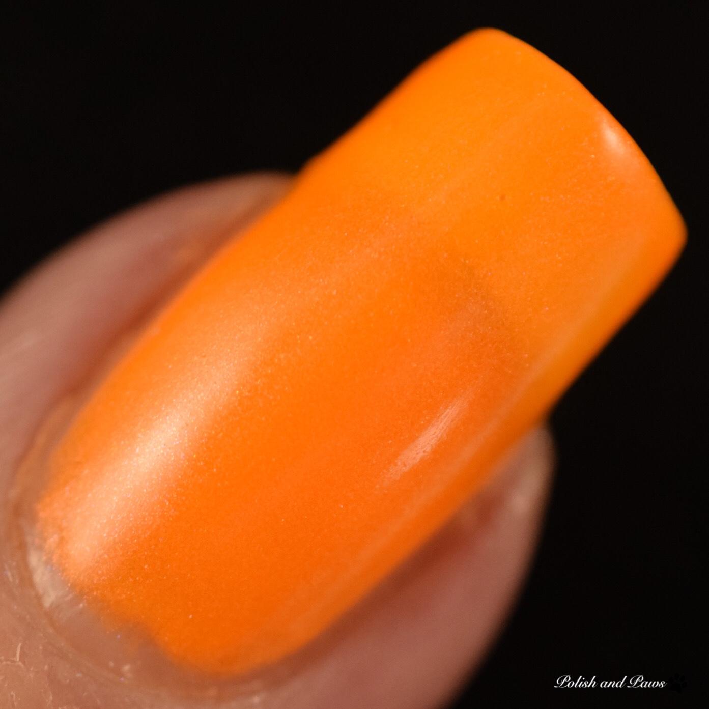 LynB Designs Neon Petal